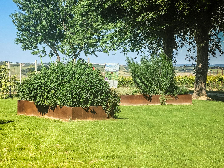 Bordure giardino all azienda agricola mapei un percorso for Aiuole per giardino