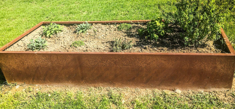 piante per bordure giardino