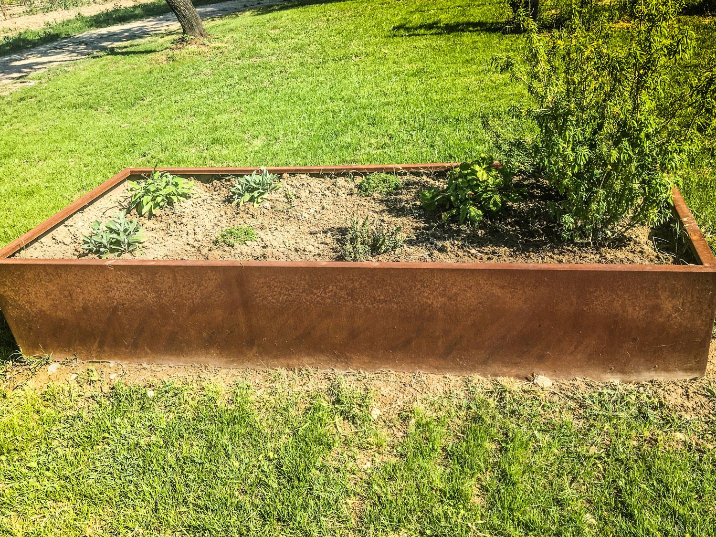 Piante Da Bordura Giardino piante per bordure giardino - cuadra