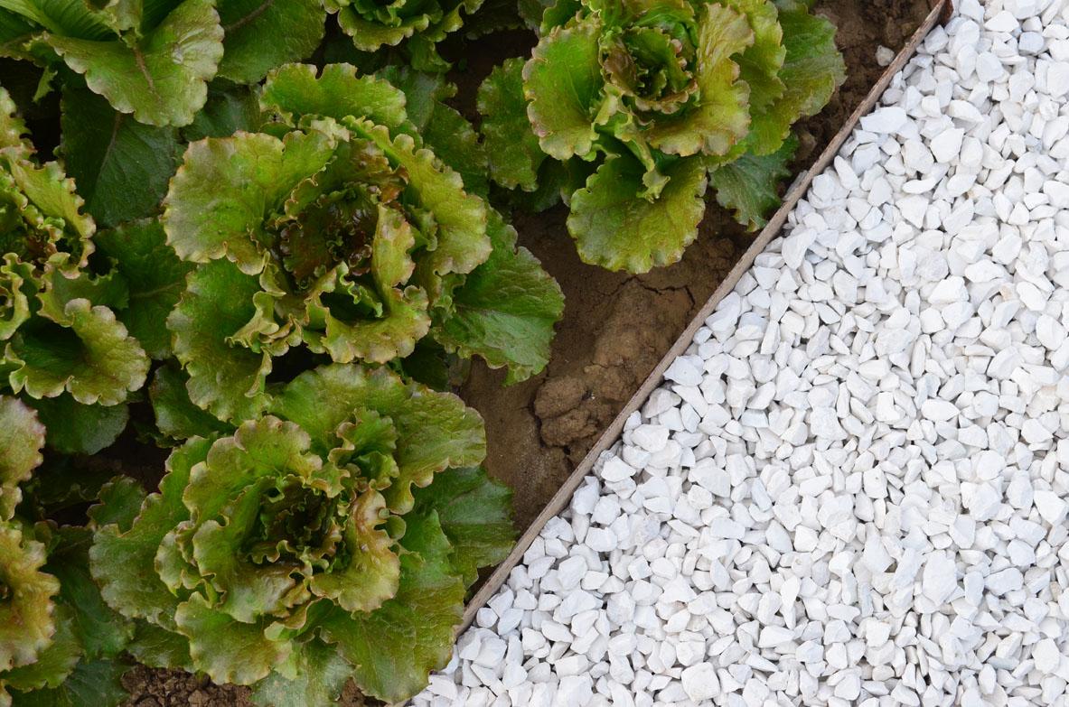 bordure-giardino-profili-segnaiuola-con-piaga-appoggio