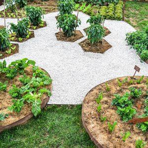 bordure giardino per orto