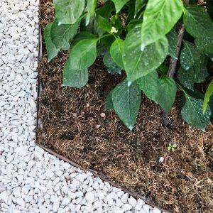 bordure giardino particolare